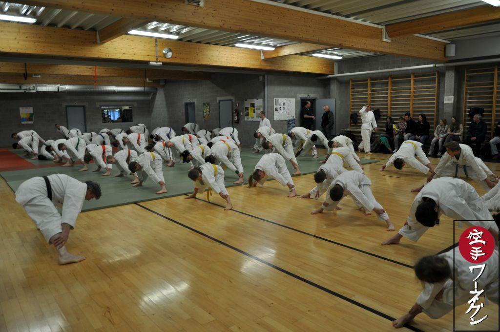 KARATE-JITSUTRAINING_2016